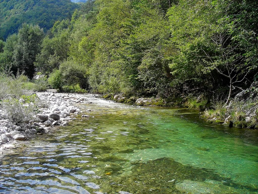 Slovenia and Croatia 130