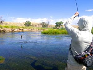 new fishing season
